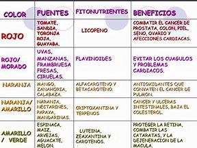 Los fito-nutrientes
