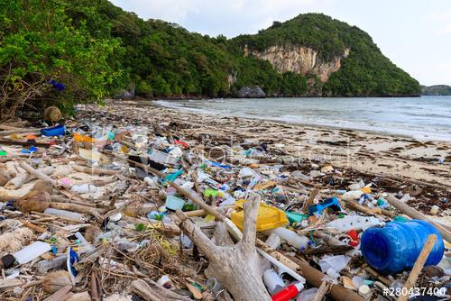 Los plásticos en el medio ambiente
